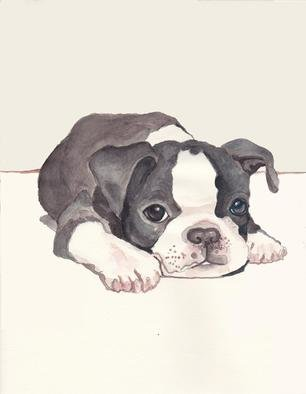 Carolyn Alston Thomas: 'Boston Terrier pup 2', 2013 Giclee - Open Edition, Animals.    This is  a watercolor I did for my niece upon special request.   ...