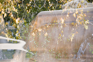 Color Photograph by Mary Mansey titled: Fontaine Automne, 2009