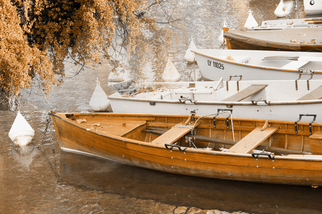 Color Photograph by Mary Mansey titled:  Barque Automne, 2009