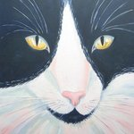 black and white cat By Mary Stubberfield