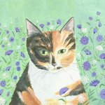 Calico Cat, Mary Stubberfield