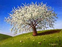 - artwork Pruno_in_Fiore-1195567457.jpg - 2007, Painting Oil, Figurative