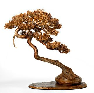 Matthew Sudlow: 'wish for more wishes', 2017 Bronze Sculpture, Trees. Artist Description: This sculpture was inspired by bonsai artist Ryan Neils most recent styling of the world- renowned Hatanaka family tree. Please visit Ryans website at