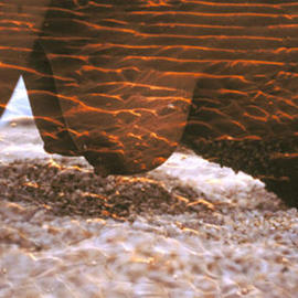 Micha Nussinov: 'Body waves', 1995 Color Photograph, Nudes. Artist Description: Photo montage, female body with tidal waves at sunset, Frazer Island Australia...