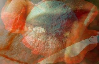 Micha Nussinov Artwork Decomposition, 2004 Color Photograph, Abstract