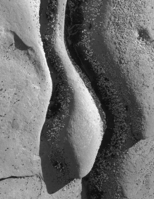 Michael Easton  'Sandstone, Hornby Island 4', created in 1994, Original Photography Black and White.