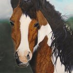 Portrait of a Horse By Gary Mishko