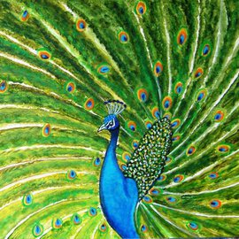 Glorious Peacock By Manjiri Kanvinde