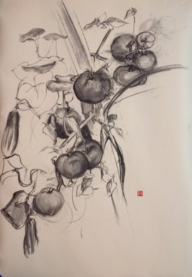 Nature Charcoal Drawing by Michelle Mendez Title: Tomatos, created in 2012