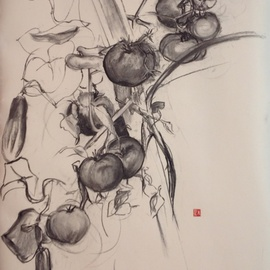 Michelle Mendez Artwork Tomatos, 2012 Charcoal Drawing, Nature