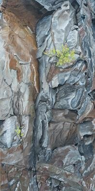 Guy Octaaf Moreaux: 'rocky wall in the rift valley', 2019 Oil Painting, Nature. Oilpaint on canvas.  The kenyan rift valley is formed as two tectonic plates, Somali plate and the Nubian plate, are splitting the African plate.  It seems so beautiful to me, just the shapes and colors of it. . . . ...