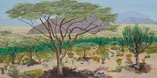 Guy Octaaf Moreaux: 'samburu', 2018 Mixed Media, nature. Samburu is a wonderful gamepark in central northern Kenya.  Besides the animals which are different than in other better known parks in Kenya, it has a beautiful landscape which I tried to render here.Painted and drawn on linen canvas. ...