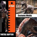 Sheet Metal Raptor, Charles Mcmurren