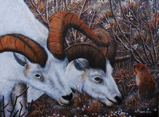 Mike Ross Artwork What Are You Looking At, 2014 Oil Painting, Animals