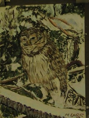 Michael Garr Artwork Shakespeare the Barred Owl in snow, 2013 Pastel, Birds