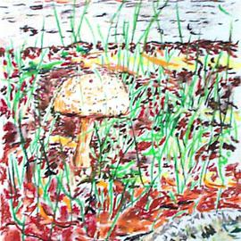 mushroom by the conklin house By Michael Garr