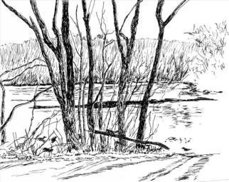 Michael Garr: 'winter ducks on the saugatucket', 2006 Pen Drawing, Wildlife. Done in the morning from the van while looking out at the millpond in Peace Dale RI. The ducks are in the foreground....