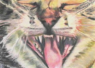 Michael Garr: 'yawn', 2008 Pastel, Cats.   just for fun  ...