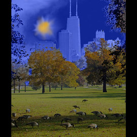 Nancy Bechtol: 'Geese Chicago Skyline blue', 2008 Other Photography, Abstract Landscape. Artist Description:  Geese with a blue Chicago skyline theme. photo colorized ...
