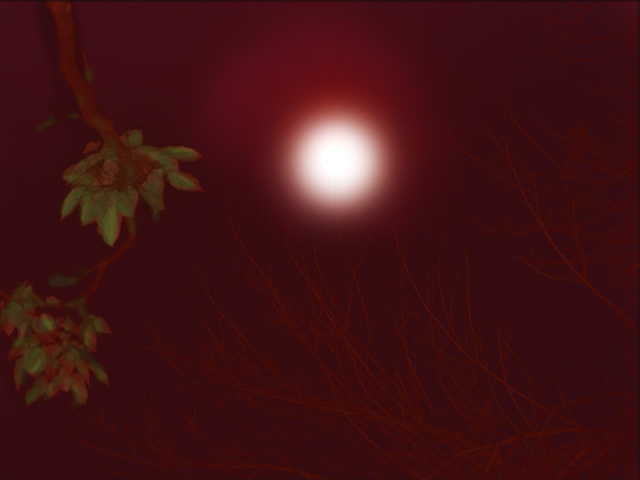 Nancy Bechtol  'RED MOON', created in 2006, Original Photography Mixed Media.