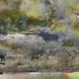 Nancy Bechtol: 'Yellowstone unreal lands', 2006 Other Photography, Abstract Landscape. Artist Description:  Using original images from a trip to Yellowstone, a panoramic unreal landscape unfolds. 1. 0 ...
