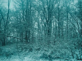 Nancy Bechtol Artwork blue serene winter, 2008 Other Photography, Landscape