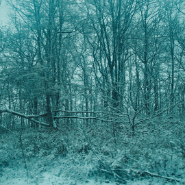Nancy Bechtol: 'blue serene winter', 2008 Other Photography, Landscape. Artist Description:  blue serene winter photo altered winter scene ...