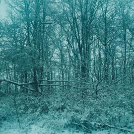 blue serene winter