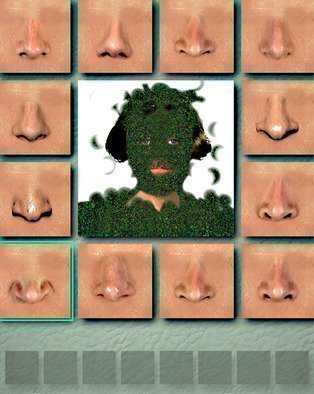Nancy Bechtol: 'grassgalsmellgoodsmell', 2017 Other Photography, Abstract Figurative. noses, funny, grass, person...