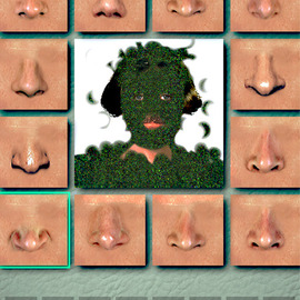 Nancy Bechtol: 'grassgalsmellgoodsmell', 2017 Other Photography, Abstract Figurative. Artist Description: noses, funny, grass, person...