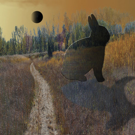 Nancy Bechtol: 'moon rabbit', 2008 Other Photography, Magical. Artist Description:  the mystical landscape where reality of the place itself has a presence beyond words1. 1. 1. digital sizes per request, varies small to big ...