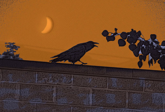 Nancy Bechtol  'Raven Orangesky', created in 2008, Original Photography Mixed Media.