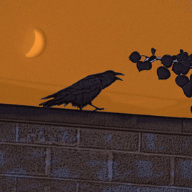 Nancy Bechtol: 'raven orangesky', 2008 Other Photography, Birds. Artist Description:  original digital photo, with vfx. shot in Alberta, Canada. 2008 on metal aluminum print framed. limited edition 25. this is 625...