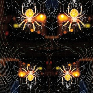 Nancy Bechtol: 'spider web mandala', 2019 Other Photography, Visionary. original photo highly manipulated with intentions of the all hallows eve.  celebrate the web of all.  includes frame...