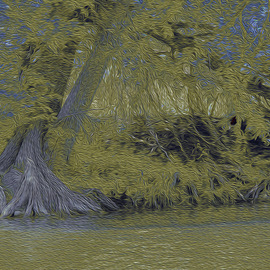 Nancy Wood: 'Guadalupe River Dark', 2013 Other Photography, Travel. Artist Description:         Digital Photo on Canvas        ...