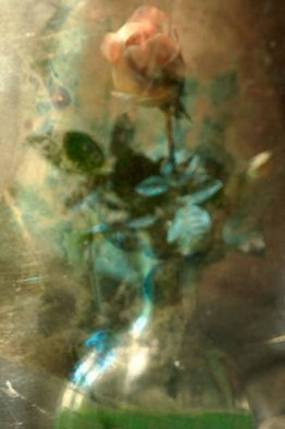 Maria Pia Gatti Artwork Fall rose, 2008 Digital Art, Still Life