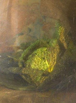 Maria Pia Gatti Artwork cabbage, 2009 Digital Art, Still Life