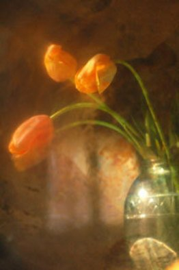 Maria Pia Gatti Artwork tulips, 2008 Digital Art, Still Life