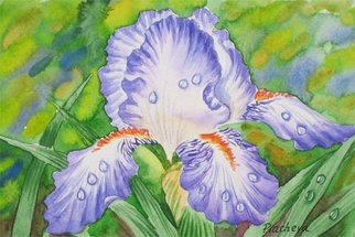 Artist: Piacheva Natalia - Title: Drops on blue iris - Medium: Watercolor - Year: 2007