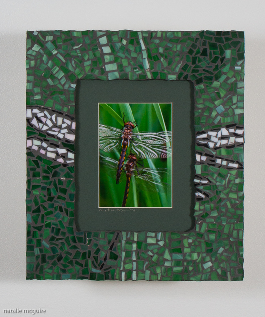 Natalie Mcguire  'Dragon Flies', created in 2015, Original Mosaic.