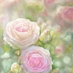 aroma of summer roses By Nataly Kartseva