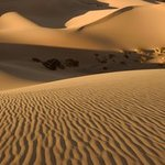 Death Valley Sand Dunes By Dennis Chamberlain