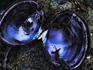 Annette Labedzki Artwork Beach 4, 2010 , Abstract