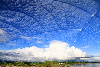 Annette Labedzki Artwork The Clouds Tell a Story, 2010 , Abstract