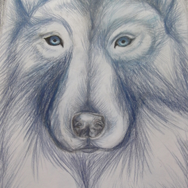 Wolf in Blue Monochrome