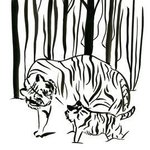 Tigers In The Woods, Niina Niskanen