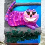 cheshire cat By Noel Molloy