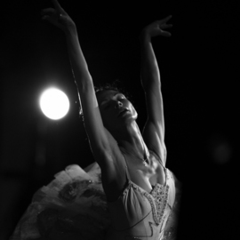 Yulia Nak: 'white swan  russian ballet', 2016 Black and White Photograph, Dance. Artist Description: Dance, black white, theater...
