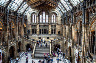 Des Byrne: 'Natural History Museum', 2015 Color Photograph, Landscape. Artist Description:   London natural history museum, colour, hdr, art, photograph ...