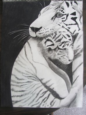 Katy Kerr Artwork Momma Tiger, 2010 Charcoal Drawing, Undecided
